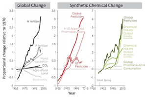 The growth of synthetic and chemical pollution on Earth
